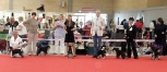 World Dog Show,Denmark -Herning Točkica
