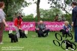 Lulica,CLUB DOG SHOW, 21.05.12.
