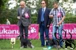 Nuuk & Tockica,CLUB DOG SHOW, 21.05.12.