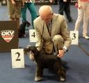Pika-WORLD DOG SHOW, Salzburg(A),20.05.12.